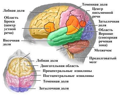 Геморрагический инсульт- кровоизлияние в мозг